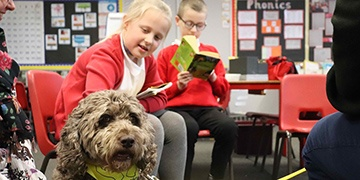 Reading dog scheme helps Springfield Academy pupils